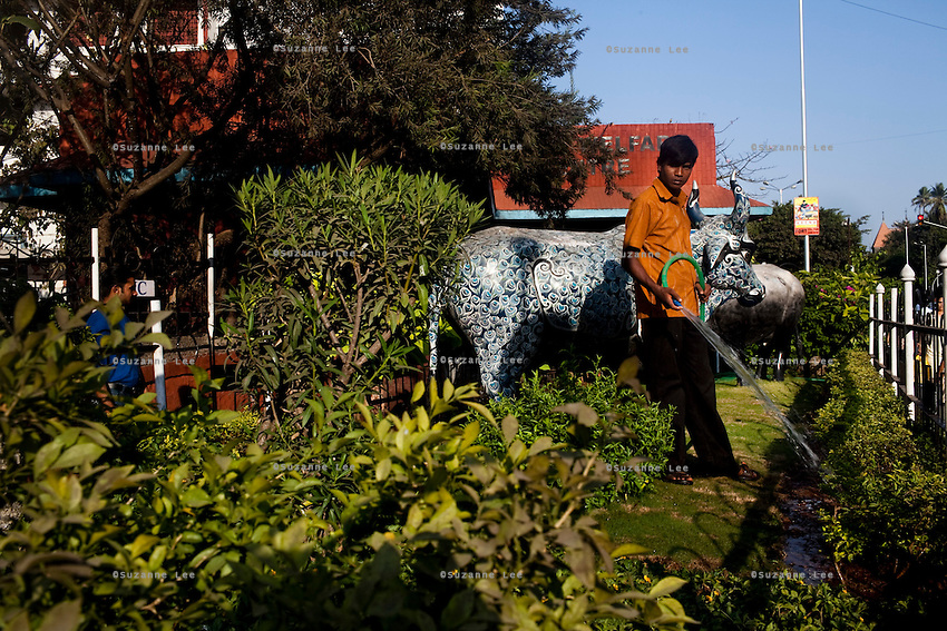 A worker waters the plants next to a statue of a blue cow in central Mumbai, India. Photo by Suzanne Lee
