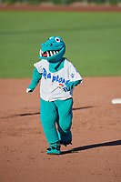 Oggy, the mascot of the Ogden Raptors during the game against the Orem Owl in Pioneer League action at Lindquist Field on June 27, 2017 in Ogden, Utah. Ogden defeated Orem 14-5. (Stephen Smith/Four Seam Images)
