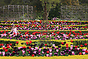 21/04/14<br /> <br /> Enjoying a moment of Bank Holiday sunshine, Suzanne Roberts (6), skips through the tulips at Arundel Castle West Sussex. There castle's tulip festival has a dazzling display of 15,000 tulips marking the 400th anniversary of tulips being grown in Europe.<br /> <br /> All Rights Reserved - F Stop Press.  www.fstoppress.com. Tel: +44 (0)1335 300098