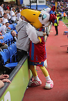 Pictured: A Swansea supporter inserts his head in the Crystal Palace mascot's beak<br />