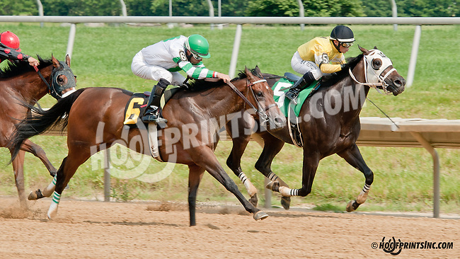Who Needs winning at Delaware Park on 6/26/13