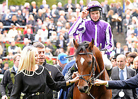 Excelebration (no. 3), ridden by Joseph O'Brien and trained by Aidan O'Brien, wins the group 1 Queen Elizabeth II Stakes for three year olds and upward on October 20, 2012 at Ascot Racecourse in Ascot, Berkshire, United Kingdom.  (Bob Mayberger/Eclipse Sportswire)