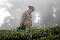 INDIA (West Bengal - Darjeeling) June 2007,Rajah Banerjee the owner of Makaibari Tea Estate in his tea garden. Makaibari produces the most expensive tea in the world. They produce the tea organically (without using any fertilizers or spraying pesticides)through permaculture.  Makaibari is situated at the misty foot hills of Darjeeling Himalayas - Arindam Mukherjee