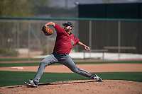 Arizona Diamondbacks relief pitcher Colin Poche (19) delivers a pitch to the plate during a Minor League Spring Training intrasquad game at Salt River Fields at Talking Stick on March 12, 2018 in Scottsdale, Arizona. (Zachary Lucy/Four Seam Images)