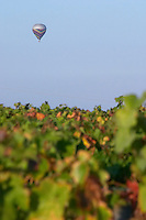 hot air balloon vineyard beaune cote de beaune burgundy france