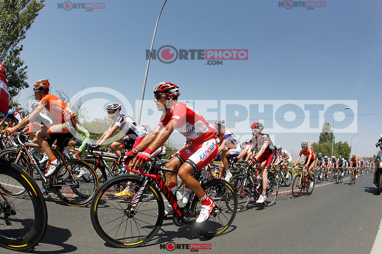 Joaquin Purito Rodriguez in the peloton during the stage of La Vuelta 2012 between Logroño and Logroño.August 22,2012. (ALTERPHOTOS/Paola Otero) /NortePhoto.com<br />