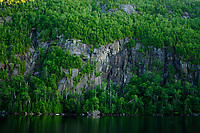 Trees in spring on the cliffs above Chapel Pond in the High Peaks Region in the Adirondack Mountains in New York State