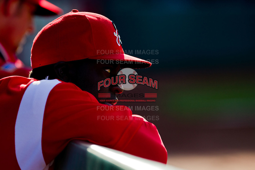 Jermaine Curtis (5) of the Springfield Cardinals watches the game from the dugout during a game against the Frisco RoughRiders on April 16, 2011 at Hammons Field in Springfield, Missouri.  Photo By David Welker/Four Seam Images
