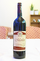 Bottle of Pijeve Sara Fier Merlot Tirana capital. Albania, Balkan, Europe.