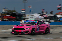 #40 PF Racing Ford Mustang GT4, GS: James Pesek, Jade Buford