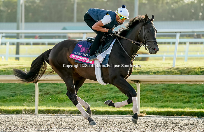 January 24, 2020: Instilled Regard gallops as horses prepare for the Pegasus World Cup Invitational at Gulfstream Park Race Track in Hallandale Beach, Florida. Scott Serio/Eclipse Sportswire/CSM