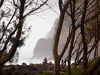 The cliffs of Kohala Mountain as they meet the ocean, as viewed through the trees of Pololu Valley, North Kohala, Big Island.