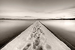 Lake Tahoe Vanishing Point Snowy dock in black and white