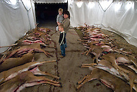 A mother and her children survey the deer kill storage tent.<br />