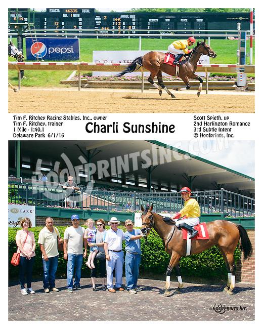 Charli Sunshine winning at Delaware Park on 6/1/16
