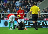 Saturday 17 November 2012<br /> Pictured: Leon Britton of Swansea referee Phil Dowd<br /> Re: Barclay's Premier League, Newcastle United v Swansea City FC at St James' Park, Newcastle Upon Tyne, UK.