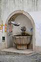 Lisbon, Portugal. 21.03.2015. a pigeon flies away from a graffitoed water fountain in the Alfama district of Lisbon. © Jane Hobson.