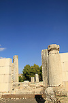 Israel, Upper Galilee, Nevoraya ancient Synagogue in Biria forest
