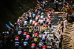The peloton climbs during Stage 8 of the 2019 Tour de France running 200km from Macon to Saint-Etienne, France. 13th July 2019.<br /> Picture: ASO/Pauline Ballet | Cyclefile<br /> All photos usage must carry mandatory copyright credit (© Cyclefile | ASO/Pauline Ballet)