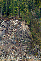 Geological folds in the headland rocks along Hinchenbrook Island, Prince William Sound, Alaska