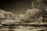 Loose Valley in Infrared