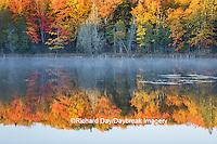 64776-01204 Pond in fall color Alger County Upper Peninsula Michigan