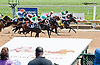 Queen Bee Teresa winning and at Delaware Park on 7/20/13