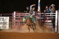 SEBRA - Chesterfield, VA - 8.29-2015 - Bulls & Action
