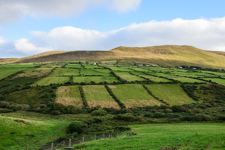 A view from the Conor Pass, on the road leading into the Dingle Peninsula, County Kerry, Ireland