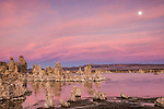 A picture if tufa towers and the full moon at Mono Lake at sunrise.