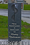 The Stone erected to the late Mary O'Halloran which was unveiled on Saturday by Norma Foley Cllr