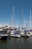 Crayton Cove Marina, Naples, Florida, USA. Photo by Debi Pittman Wilkey