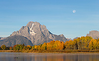 Of course a sunrise shoot at Oxbow Bend was on the itinerary. This one might have been pretty boring if not for the setting moon adding a nice touch.