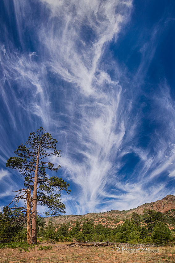 Cirrus Clouds over Mount Elden, Arizona