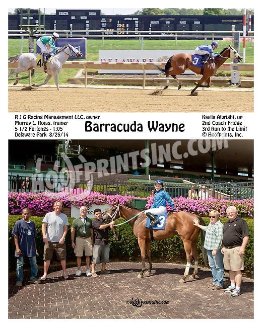 Barracuda Wayne winning at Delaware Park on 8/25/14
