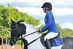 01/05/2017 - Class 5 - Unaffiliated showjumping - Eastminster school of riding