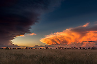 'Clash of the Titans'<br />