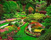 Tom Mackie, FLOWERS, photos, The Sunken Garden, Butchart Gardens, Victoria, Vancouver Island, British Columbia, Canada, GBTM070314-1,#F# Garten, jardín