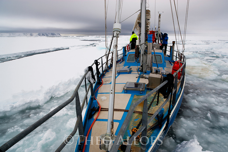 Norway, Svalbard, sail boat Arctica moving through drift ice