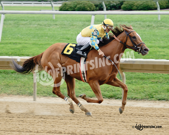 Utopian Wife winning at Delaware Park on 9/10/14