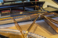 Closeup view of the inside of an open Steinway grand piano