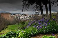 Alhambra, Granada, Andalucia, Spain.