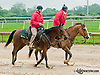 Outriders at Delaware Park on 6/10/13