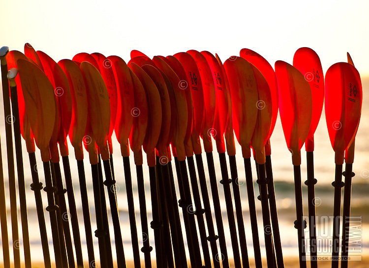Canoe paddles in beach rack, Wailea Beach Resort, Maui