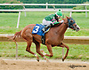 Vicky Ticky Tavie winning at Delaware Park on 8/3/13
