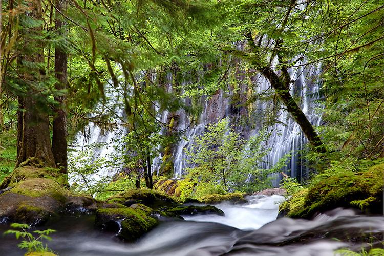 Panther Creek Falls consists of two tiers of segmented waterfalls -Gifford Pinchot NF, Washington
