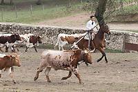"""Uriel Moreno """"Zapata"""" tentando en Marques del Quintanar"""