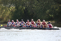 Race: I5   Inv.8+   [290] Stratford-upon-Avon BC  vs [291] Old Rossothians <br /> <br /> Ross Regatta 2017 - Monday<br /> <br /> To purchase this photo, or to see pricing information for Prints and Downloads, click the blue 'Add to Cart' button at the top-right of the page.