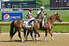 Edgewater before The Joseph French Memorial Stakes at Delaware Park on 5/19/12