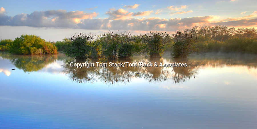Everglades National Park, Anhinga Trail